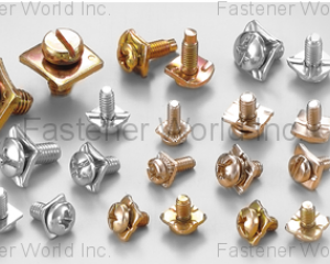 fastener-world(CHIAN YUNG CORPORATION  )