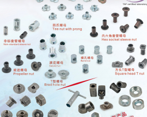 Non-Standard Sleeve Nut, Tee Nut with prong, Barrel Nut, Square Head T Nut, Propeller Nut, Swivel Nut, Brad Hole Nut