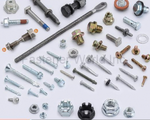Self Drilling Screws, Self Metal Screw, Window Screw, Thread Forming Screw, Taptite, Machine Screw, Sems, Customized Special Items, Hex Nuts, Square Nuts, Weld Nuts, All Metal Prevailing Torque Nuts, Flange Nuts, Conical Nuts, T Nuts, Customized Special Parts